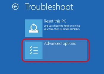 Troubleshoot screen, Advanced Options