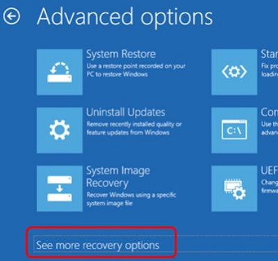 Advanced options screen, See more recovery options