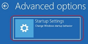 Advanced options screen, Startup Settings option